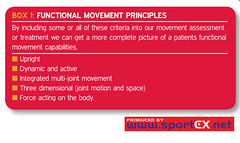 Functional movement principles (sportEX journals) Tags: pain movement brain medicine rehabilitation sportsmedicine sportex sportstherapy sportexmedicine