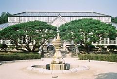 Daeonsil (ulanalee) Tags: film 35mm asia korea seoul southkorea changgyeonggung   canonetql17giii kodakgold200