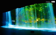 Nature Forest Lakes Waterfalls Fresh New Hd Wallpaper (Infoway LLC - Website Development Company) Tags: wallpaper beautiful wonderful nice superb awesome images exotic watercolour hd twinlakes incredible breathtaking classy mindblowing dreamlake beautifullnature waterfallintheforest peacefullake moonwallpapers responsivewebsitedesign natureforestlakeswaterfallsfreshnewhdwallpaper lakeforestwallpaper pineforestlake natureautumnforestlake natureforestonthelake lakemountainforest sunsetswallpaper responsivewebdesigncompany lovelysunsetoveraforest wintersnowhouseforestlake waterforestlake tropicallakeforestnature skylakehillforest beautifuleveninginalakeforest riverlakeicemountains
