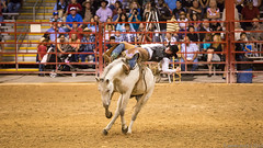 20131108 5DIII Davie Pro Rodeo83 (James Scott S) Tags: girls horses sport cowboys speed canon scott photography eos james is high florida action mark no flash barrel fast 8 competition s bull racing bulls riding ii rodeo hi fl cowgirls davie broncos 70200 eight f28 ef seconds weekley 5diii