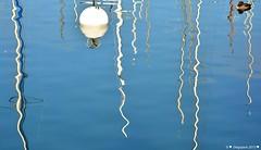 Ondulations (Diegojack) Tags: port eau lac reflets insolite morges