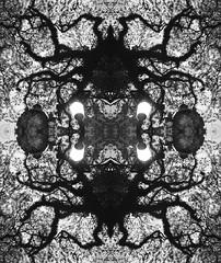 tentacles_flip (GabiMiyuki) Tags: light shadow brazil nature linhas brasil night natureza portoalegre pb line flip noite imagination pretoebranco sombras monstro gasometro imaginao blackandwrite gabimiyuki