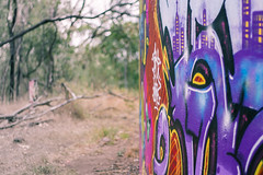 (s.anchovy) Tags: red yellow graffiti paint purple watertower melbourne