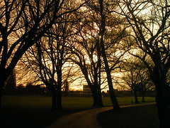 EAST PARK ON A DULL MORNING WITH THE POLICE STSTION IN THE BACKGROUND IN KINGSTON upon HULL THE CITY OF CULTURE IN 2017 (zxbill55) Tags: park city morning blue trees sky plants tree grass station clouds shadows police east kingston shade hull beech