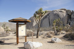Belle Campground (Joshua Tree National Park) Tags: camping nationalpark joshuatree campground information joshuatreenationalpark bellecampground