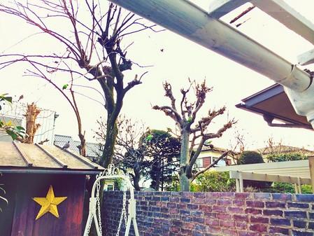 鈴木えみ 画像34