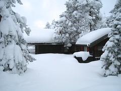 Mye sn i januar (fotomormor) Tags: sweep hytta sn trr vikerfjell flugumyri pregamewinner
