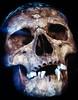 Skull (Aspiriini) Tags: skull head teeth human bones