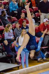 Womens Gymnastics at NCSU 31 January 2015 (alloyjared) Tags: gymnastics ncsu wolfpack ncstate