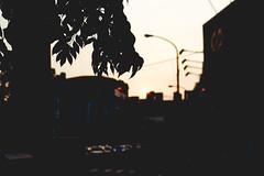 Setting Shadows(61/365) (Eric Lin Photography) Tags: light sunset orange sun silhouette photo shadows taiwan taichung photoperday