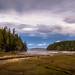 Stavis Bay Cove