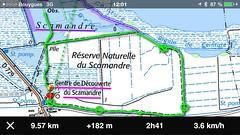 Sentier de la Fromagre , au Scamandre -  IMG_3385 (6franc6) Tags: 30 janvier languedoc gard ign 2015 petitecamargue rserve obseravtion scamandre 6franc6 faunelr iphigenie