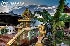 DSC_2983 (MORAD LE THAI Photography) Tags: pattaya thailande sityodtong muaythaï