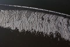 Rolf_Nagel-Fl-4938-Luft_Wanttenmeer (Insektenflug) Tags: winter germany deutschland nationalpark frost flat aerial ostfriesland np eis nordsee tidal watt channel küste wilhelmshaven wattenmeer luftaufnahme wangerooge niedersachsen waddensea priel tidalmudflats nationalparkniedersächsischeswattenmeer prielsystem