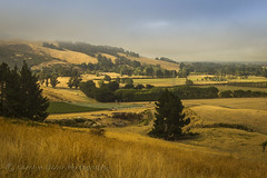 Early fog lifting (bluepoppynz) Tags: christchurch landscape canterbury drought porthills canon60d ef1635mm bluepoppynzyahooconz