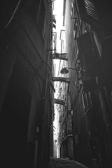 Una lama nel buio (-Makar79-) Tags: blackandwhite monochrome mono italia liguria genova biancoenero streetview 6d vicoli caruggi centrostoricodigenova noiliguri ilcarmine canonef24mmf14liiusm