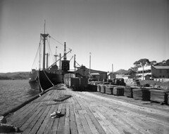 Regatta Point Wharf, Copper Stacks, 1952 (Tasmanian Archive and Heritage Office Commons) Tags: railway mining copper tasmania shipping westcoast strahan