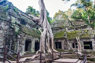angkor - cambodge 2014 21