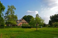 Landscape Forest (JaapCom) Tags: trees holland tree netherlands dutch clouds farmhouse landscape landschaft paysbas wezep soppe farmhause jaapcom