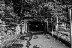 DSC00447 (Damir Govorcin Photography) Tags: history island sony sydney australian tunnel cockatoo convict settlement a7ii