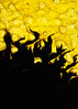 Permeation (.annajane) Tags: abstract black macro water yellow closeup ink paper flashphotography absorption