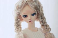 IMG_0040 (Tinn Chun) Tags: robin doll bjd bf bluefairy