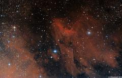Pelican Nebula (IC5070, IC5067) (alastair.woodward) Tags: sky night america canon stars derbyshire north pelican clip filter nebula astrophotography goto pro astronomy derby constellation modded cls stargazing deneb cygnus ngc7000 ic5070 ic5067 skywatcher heq5 astrometrydotnet:status=solved 1000d qhy5lii 130pds astrometrydotnet:id=nova1632381