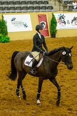 Novice Flat National Competition (shirley319) Tags: horse unitedstates lexington kentucky may erica nationals equestrian 2016 d600 horsecompetition ihsa kentuckyhorsepark noviceflat