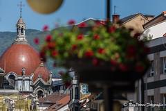 Jardineras colgantes de la Calle Pelayo de Oviedo, Asturias, Espaa. (RAYPORRES) Tags: espaa monumento asturias escultura oviedo estatua junio jardinera 2016 callepelayo principadodeasturias
