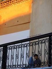 Chefchaouen-Marruecos. (lameato feliz) Tags: boy chefchaouen marruecos mvil muchacho