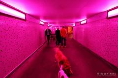 20160616-54-Neither Here nor There at Dark MOFO 2016 (Roger T Wong) Tags: art festival night australia tasmania hobart 2016 sony1635 rogertwong darkmofo railwayroundaboutfountain sel1635z sonya7ii sonyilce7m2 sonyalpha7ii sonyfe1635mmf4zaosscarlzeissvariotessart