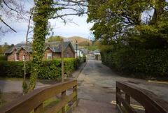Scotland Day Three (Crazyideas95) Tags: trip scotland highlands sunny loch lomond luss