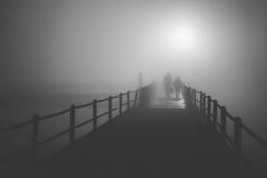 Mood Chaser (_Moliveira) Tags: noir modd mood bw fog foggy haze mist misty night