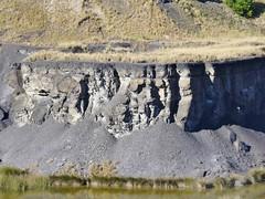 Detail, Shale strata - Sydney Olympic  Park (AndyBrii) Tags: quarry homebush sydneyolympicpark ringwalk statebrickworks