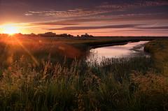 Calling (SimonTHGolfer) Tags: uk sunset summer sky nature water sunrise landscape dawn suffolk nikon lensflare d750 aldeburgh goldenhour eastanglia landscapephotography simontalbothurnphotography