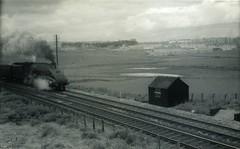 img788 (OldRailPics) Tags: steam aberdeen kingfisher area british locomotive railways 60024