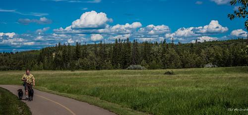 2016 - Road Trip - Calgary Alberta - Fish Creek Provincial  Park - 1 of 2