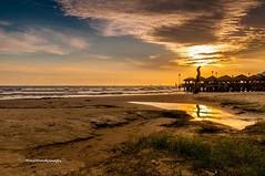 Moment of disposition..... (MailHamdi) Tags: sun beach evening nikon malaysia silhoutte selangor sandybeach d90 banting morib sigma1750mmf28