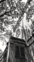 French gothic shadows in Edgewater Beach (williamw60640) Tags: chicago cathedral catholicchurch frenchgothic architecturaldetails stitacatholicchurch