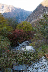 (GenJapan1986) Tags: travel autumn mountain japan landscape     nagano   2011   nikond90