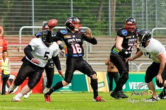 Cologne Falcons vs. Duesseldorf Panther 2013-05-12 15-48-03 (AmFiD) Tags: football gfl dsseldorfpanther colognefalcons amfid