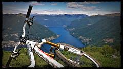 This made my day (Rebel Yell 82nd) Tags: italy italia mtb lombardia lagodicomo brunate lariano mountainbik allmountain boletto