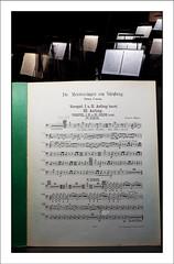 P1010769 (-AR-) Tags: music work opera orchestra muziek wagner werk nrnberg grancassa bassdrum orkest orkestbak meistersinger orchestrapit grotetrom