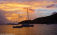 Fig Tree sunset across the yachts (grahamwiffen) Tags: sunset orange yellow clouds boats golden nikon glow catamaran caribbean bequia yachts pinks moored stvincentandthegrenadines admiraltybay 1735mmf28 d7000