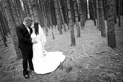 Chris and Tina (Day Vid Z / ASCENSION Photography) Tags: trees wedding portrait canada cute love groom bride nice perfect kiss couple farm husband epic marrige wifre