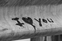 5B3A0253 (ninobrn99) Tags: longexposure nightphotography trees blackandwhite bw moon art cars apple scale church water coffee alexandria lines architecture stairs bells canon reflections landscape graffiti hotel virginia dc mac memorial catholic fuji cross geometry si curves navy postoffice creative lion shapes streetphotography bikes maryland powerlines worldwarii subaru lincoln civic iloveyou irs constitution oldtown wrx capitalbuilding scooby capitolbuilding washingtonmemorial lightroom reflectionpool x10 tangierisland honds wwiimuseum windows7