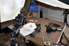 Nikon D800 Macro Tests: Macro Setup- (7/24/2013) (GeneInman.com) Tags: macro studio photography diy interesting zoom gene flash gear most mostinteresting setup tests strobe inman d800 2470mm d700 indect f28gnikon d700af wwwgeneinmancom houstontexasnikon