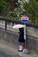 (n'oras_et_narie) Tags: girl rain umbrella pluie busstop schoolgirl fille takayama ef70200mmf4l uniforme parapluie hidatakayama  sanmachisuji canon7d