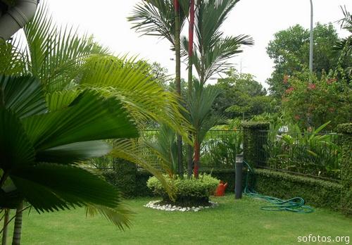 Jardinagem e paisagismo residencial