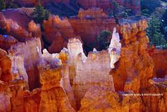 TOUCHED BY GRACE (Aspenbreeze) Tags: utah spires canyon bryce brycecanyon rockformations brycecanyonutah rockspires aspenbreeze moonandbackphotography bevzuerlein brcyecanyounutah